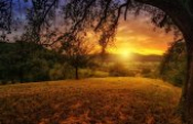 Güneş Doğacak