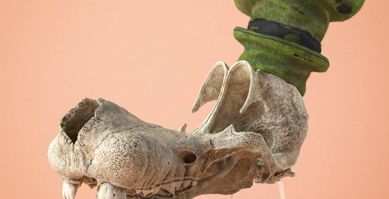 Fosilleşmiş Çizgi Film Karakterleri