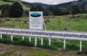 Taumata Tepesi – Yeni Zelanda