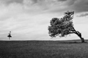 Güzel Söz Ağaca Benzer