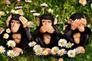 Üç Maymun Aslında Ne Demek?