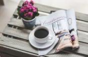 Yeni Dünyanın Edebiyat Dergileri