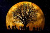 Ay ile Muhabbet