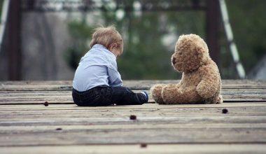 Çocukluktan İnsanlığa, Tohumdan Ağaca