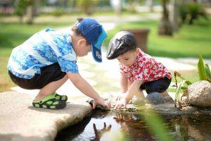 Çocukluktan İnsanlığa, Tohumdan Ağaca 3