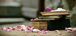 Kitap Arasında Unutulan Güller