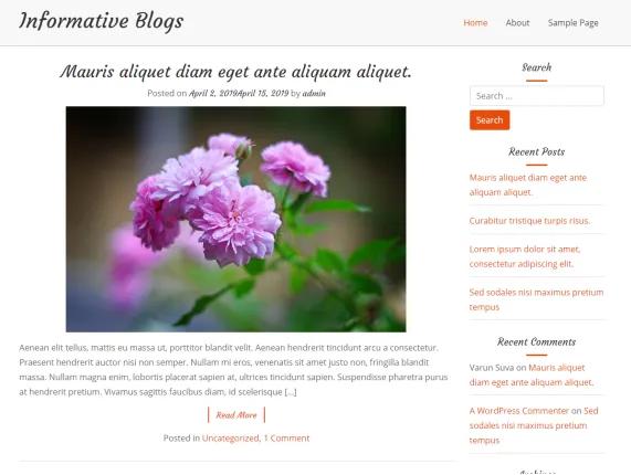 wordpress-informative-blog-themes